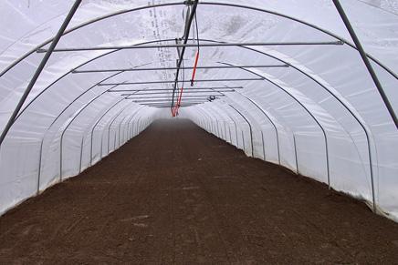Foliengewächshaus für die Landwirtschaft