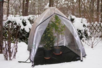 Winterabdeckung für Pflanzen