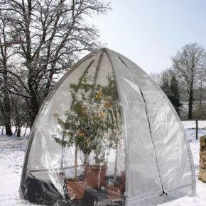 Folienhaus, Winterabdeckung für Pflanzen